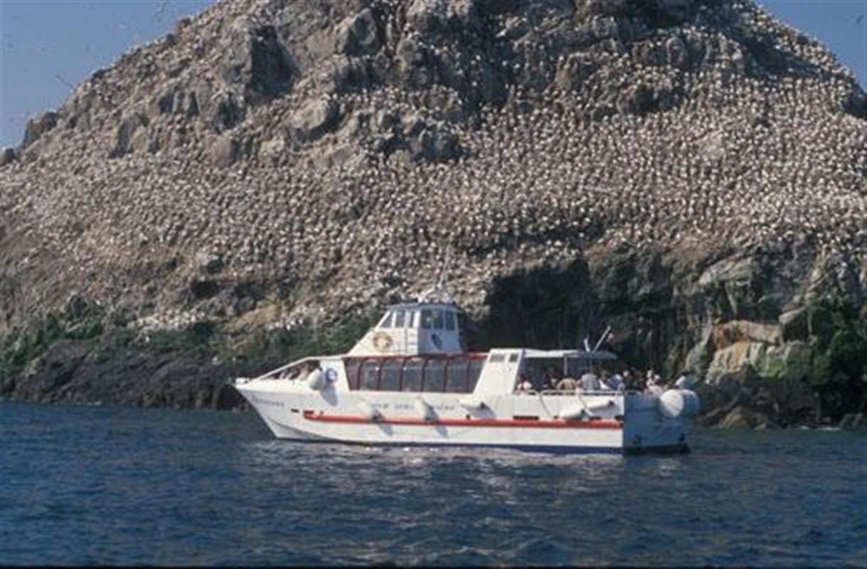 Balade en bord de mer - 3 6